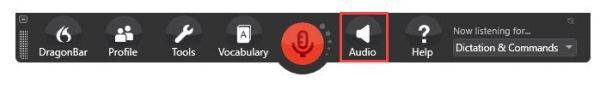 Dragon Individual v15 DragonBar - Audio button